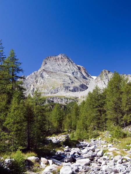 marvellous berg