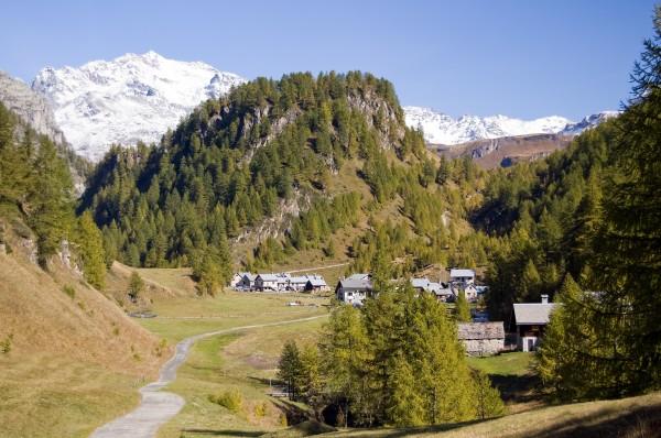 alpen sommer sommerlich voralpen viehweide landschaftsbild