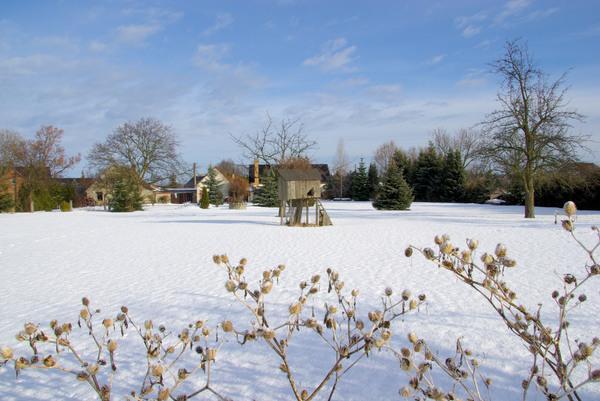 garten im winter garden in