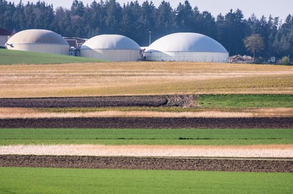 gruene bioenergie