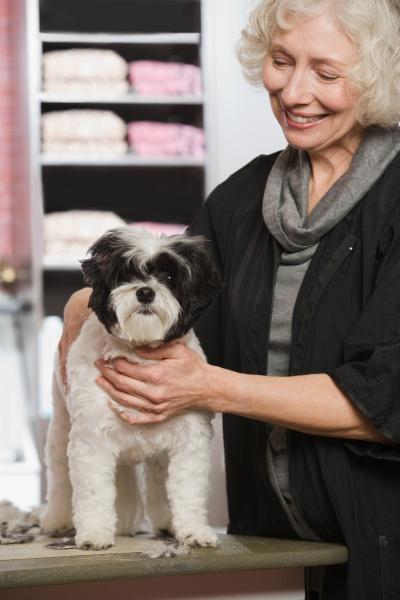 frau und hund am haustierpflegen salon