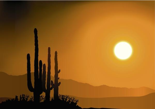 sonnenuntergang sonnenaufgang abendrot silhouette silhoutte schattenbild