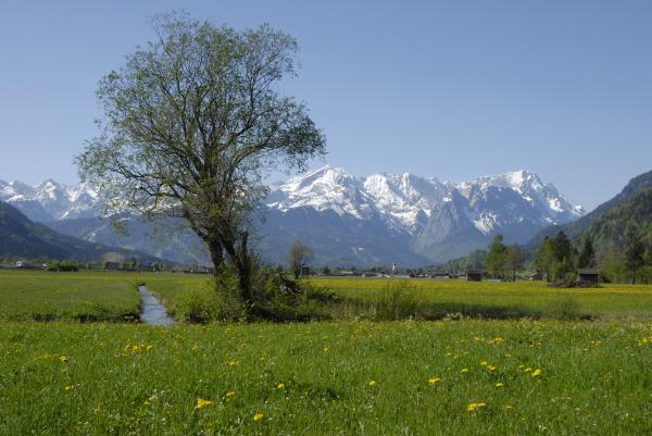 fruehlingslandschaft vor wettersteingebirge