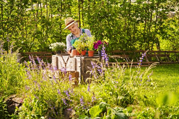 garten gaertner strohhut pflanzen