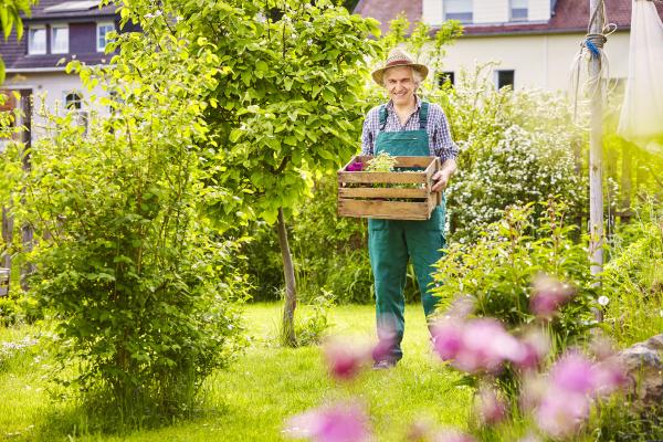 garten gaertner strohhut tragen kiste pflanzen