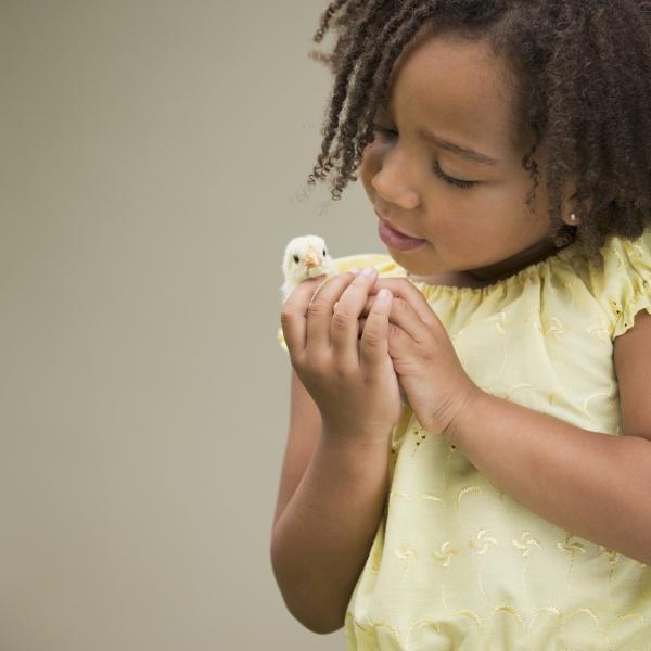 weiblich tier haustier neugier neugierde kuscheltier