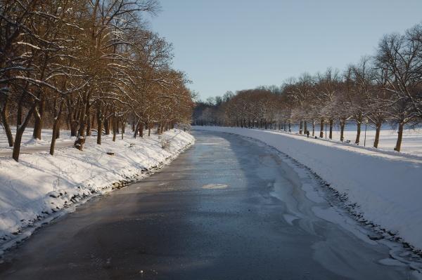 winterpark mit baeumen