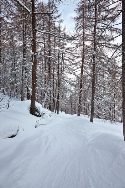 winterpark