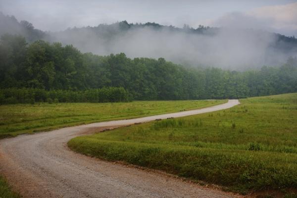 gewundener laendlicher feldweg durch einen nebelverhangenen
