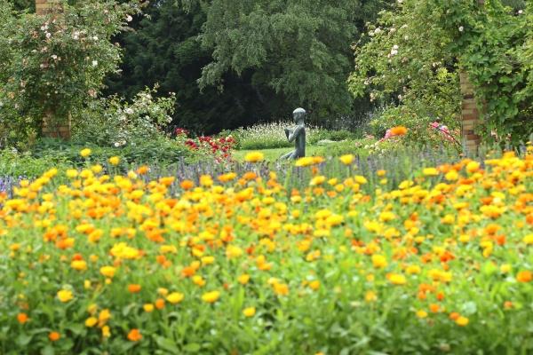 juengling mit taube im botanischen garten