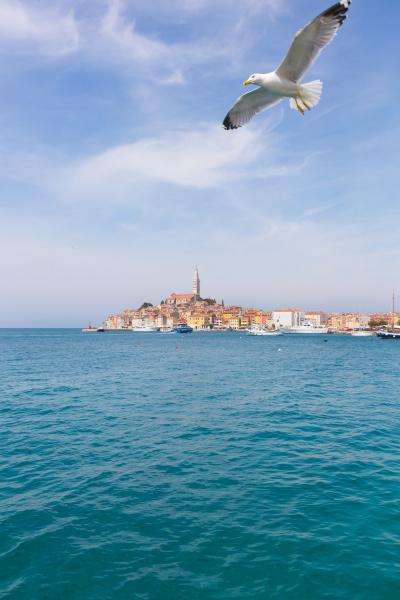 schoene aussicht auf rovinj stadt kroatien