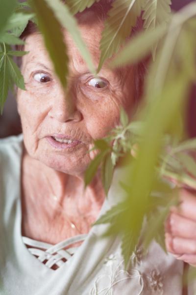 schockierte seniorin mit cannabispflanze