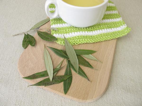 eine tasse olivenblaettertee