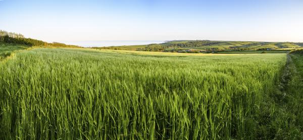 laendliche landschaft mit blick ueber ackerfelder