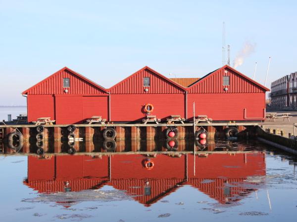 rotfisch-bauten, im, winter, mit, reflexion, auf - 23218913