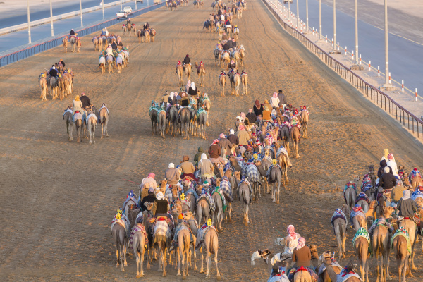 hochwinkelansicht von menschen die auf kamelen