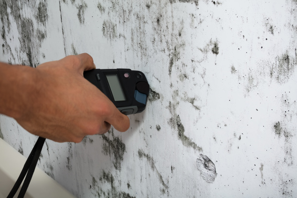 person messung naesse der moldy wand