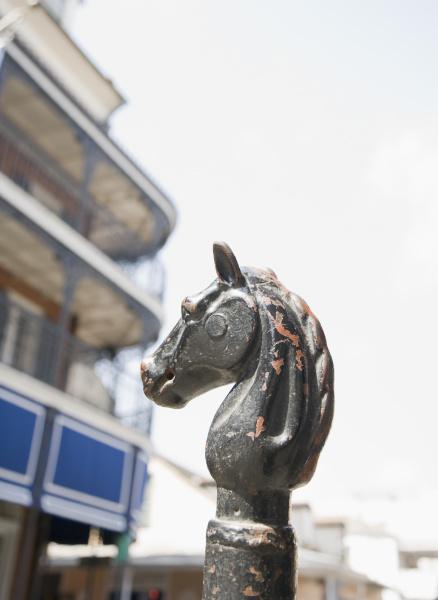 profil pferd ross tiere metall outdoor