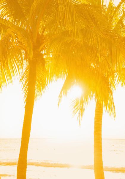 urlaub urlaubszeit ferien sonnenuntergang leuchten leuchtet