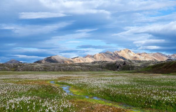 vulkanische, berge, von, landmannalaugar, in, fjallabak - 24155580