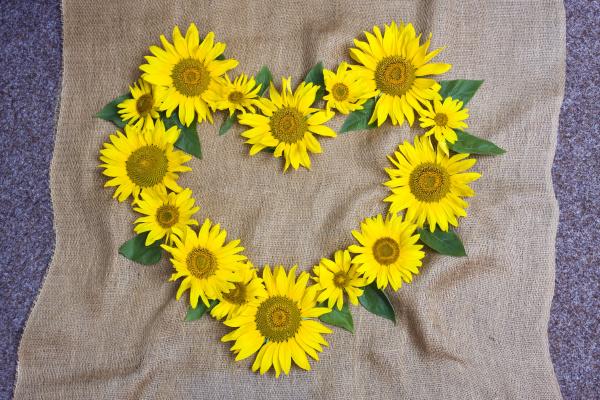 herz aus sonnenblumen