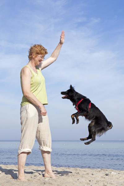 frau lasst hund am strand springen