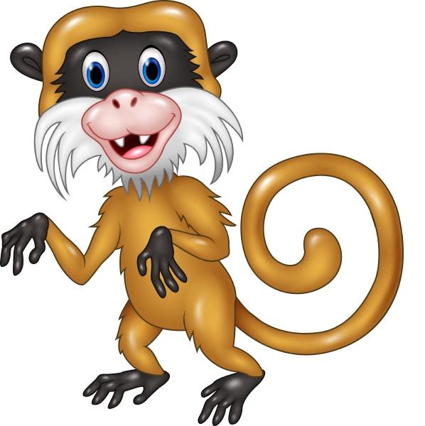 cartoon lustiger tamarin affe auf weissem