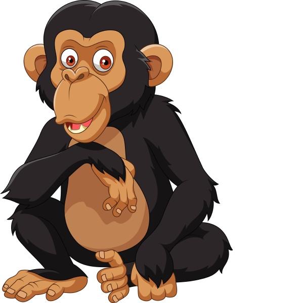 karikatur schimpanse auf weissem hintergrund isoliert