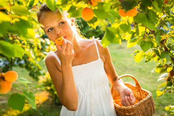huebsche junge frau die aprikosen auswaehlt