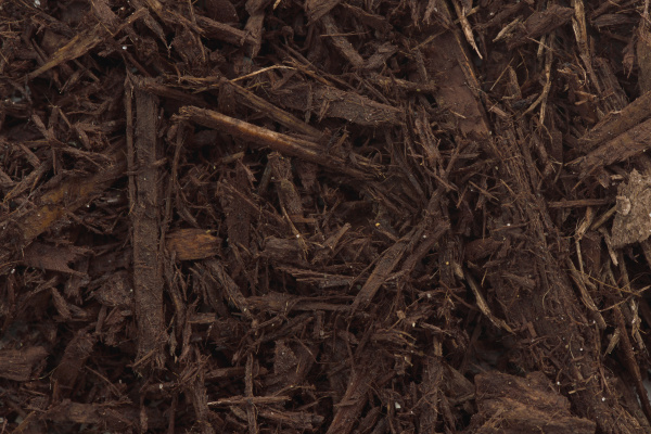 baum rinde mulch nahaufnahme textur hintergrund