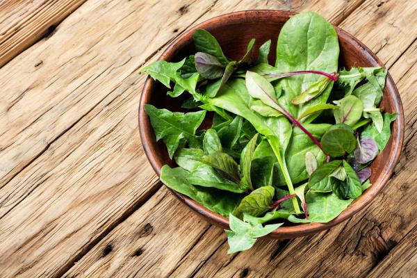 gruene kraeuter mischen salat