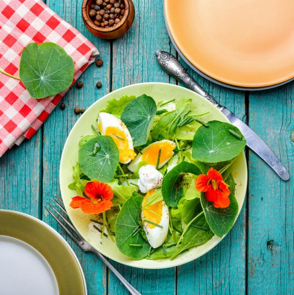 sommer nasturtium salat