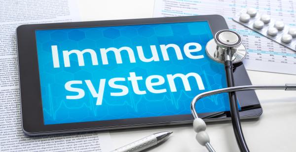 das wort immunsystem auf dem display