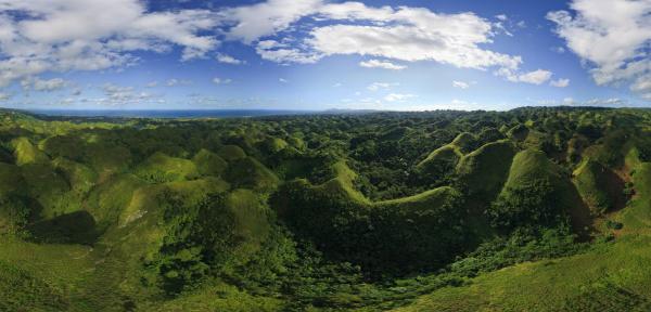 luftaufnahme eines dschungelwaldes in der dominikanischen