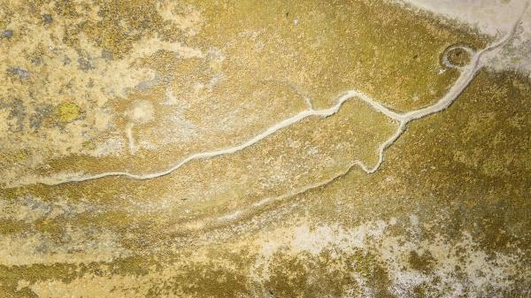 abstrakte luftaufnahme der feuchtgebiete von terschelling