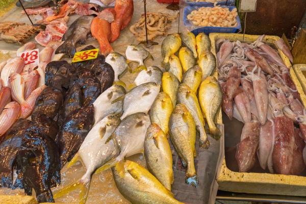 fischmarkt vielfalt