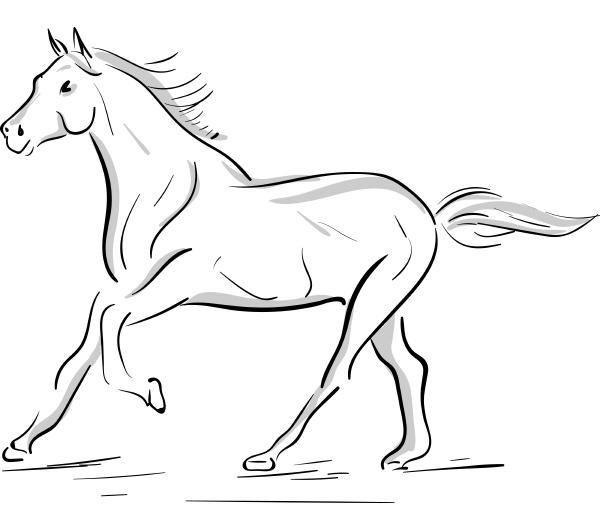eine laufende pferdesilhouette vektor oder