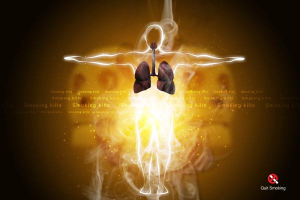 menschliches atmungssystem mit lunge