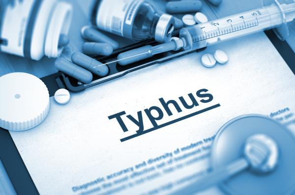 typhus medizinisches konzept