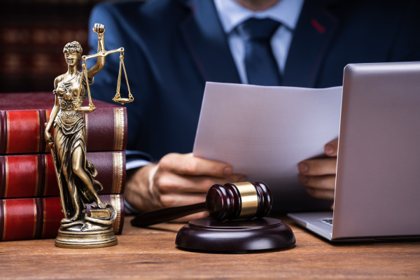 midsection of lawyer reading documents near