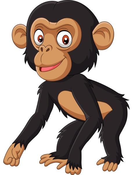 suesse baby schimpansen cartoon auf weissem