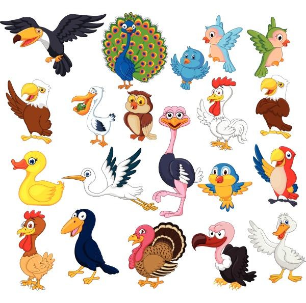 cartoon vogelsammlung set