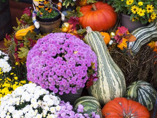 tennessee gatlinburg halloween dekorationen