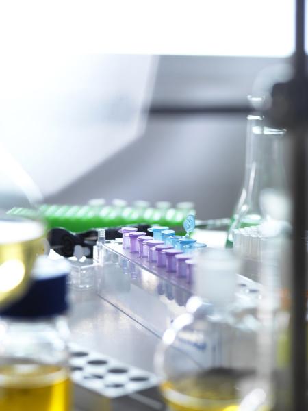 hochwinkelansicht verschiedener laborexperimente auf dem tisch
