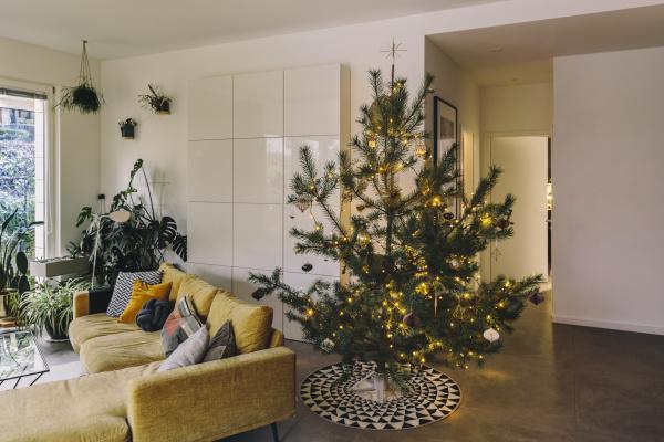 geschmueckter kiefern weihnachtsbaum im wohnzimmer