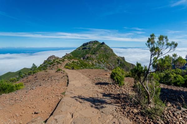 from, mountain, pico, arieiro, to, pico - 28215311