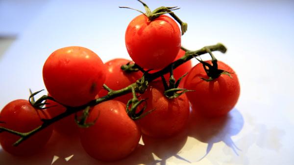 tomaten set