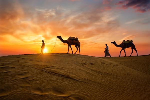 indische kameltreiber kamelfahrer mit kamelsilhouetten in