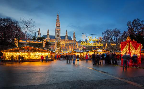 rathaus und weihnachtsmarkt in wien