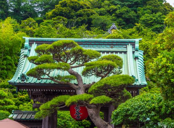 beruehmter hase dera tempel in kamakura